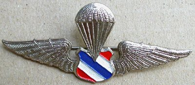 Collectible pins, military badge from Thailand and other countries