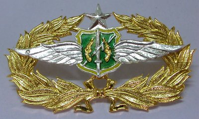 Collectible pins, military badge from Thailand and other